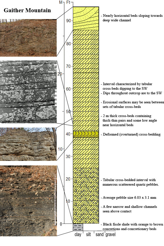 Description of cross-bedding of the middle Bloyd sandstone at Mt. Gaither from Unrein, 2007. (See full citation on our  Scientific Papers page .