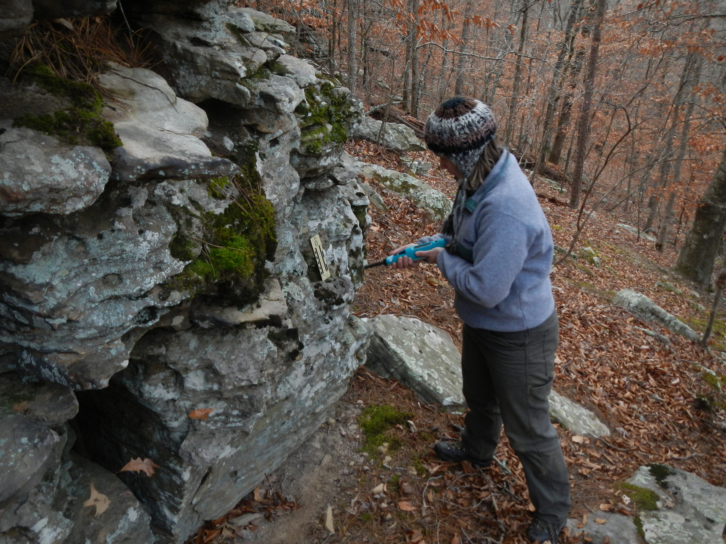 Stephanie Shepherd getting measurements of compressional strength on Boone Formation outcrop with a Schmidt Hammer (it doesn't look like a hammer at all!)