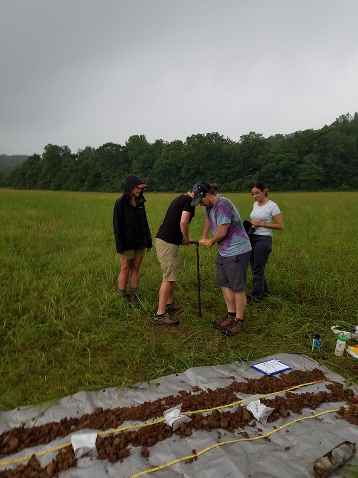 THE TEAM AUGERING AWAY TO GATHER SOIL FOR ANALYSIS. FROM LEFT TO RIGHT, SAM, MARK, MIKE (ME), AND KATHLEEN