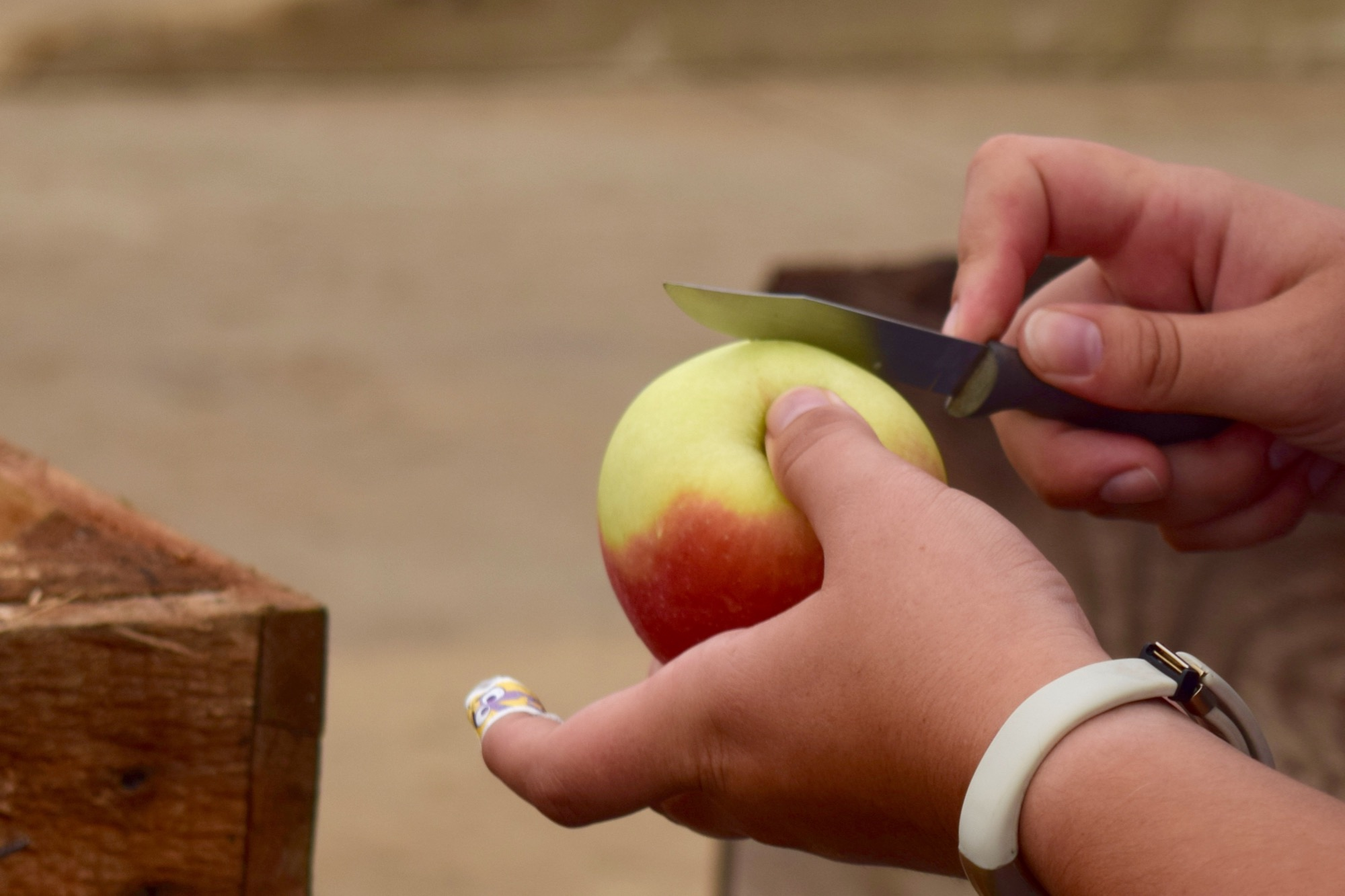 We test every crate of apples before we carry it in the cider house. And by test, we mean taste!