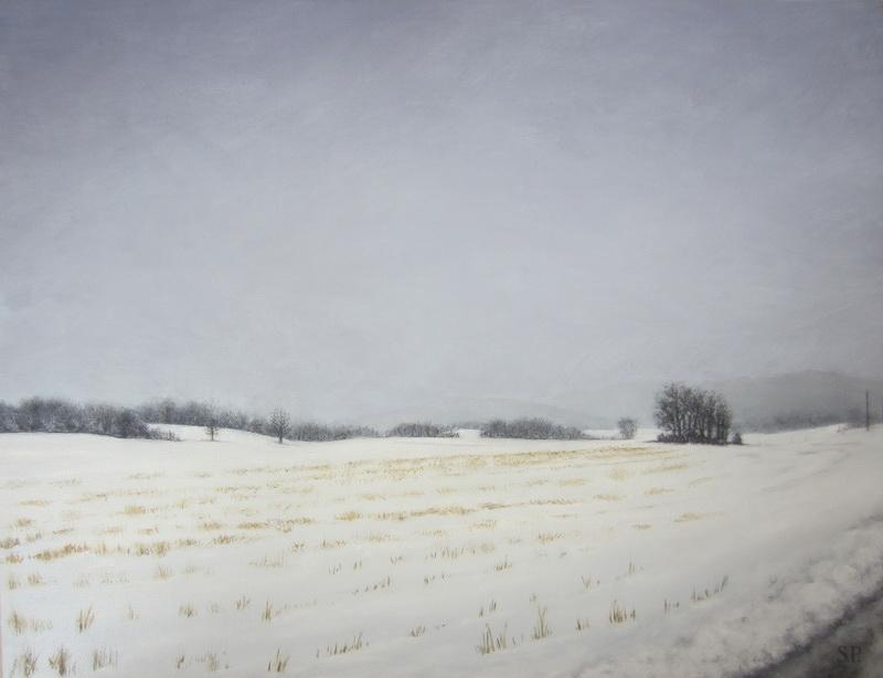 February Corn Field