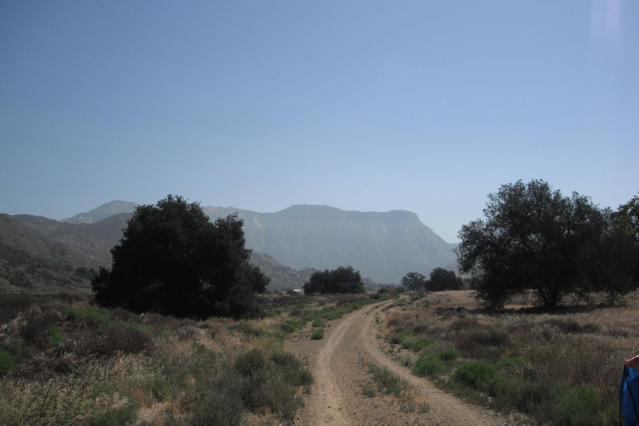 Photo by Alyssa Burley, EnviroMINE, Inc. for El Monte Nature Preserve, LLC.