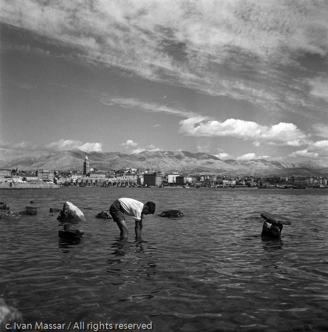 Fishing for mollusks, harbor.  Trieste, Yugoslavia.