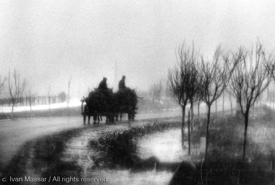Cart in Fog.  Transylvania, 1968