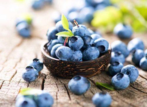 blueberries-fruit-500x366 (1).jpg
