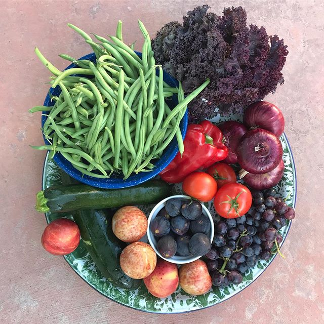 Don't sleep on the end of summer bounty - run do not walk to your nearest farmers market! Green beans, red kale, red onion, grapes, red bell pepper, tomatoes, FIGS, plums, nectarines zucchini ❤️✨ @oooobyfresno