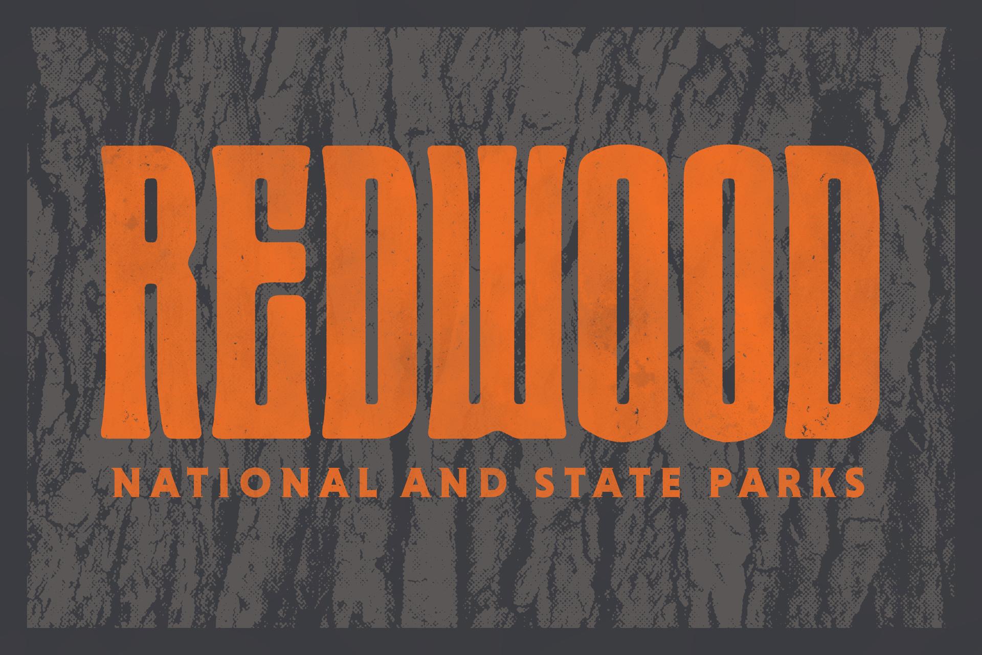 Redwood_ScreenWorkingDraft.jpg