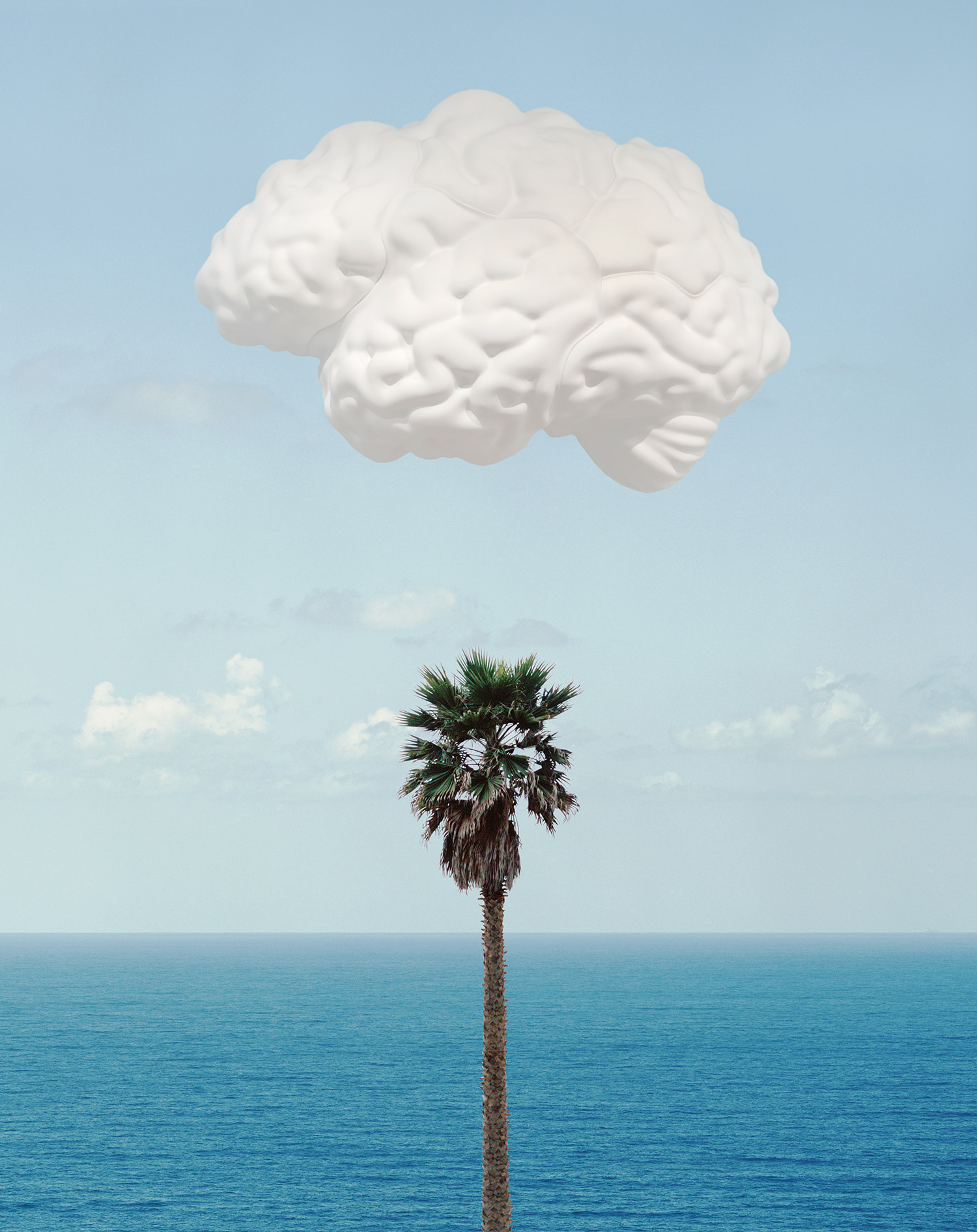 Brain/Cloud (With Seascape and Palm Tree) , 2009 Publisher:Counter Editions Limited, Edition of 145.  ©John Baldessari