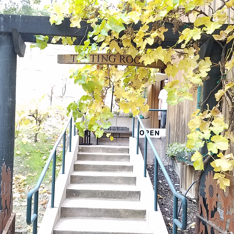 Tasting room stairway to Bodega de Edgar