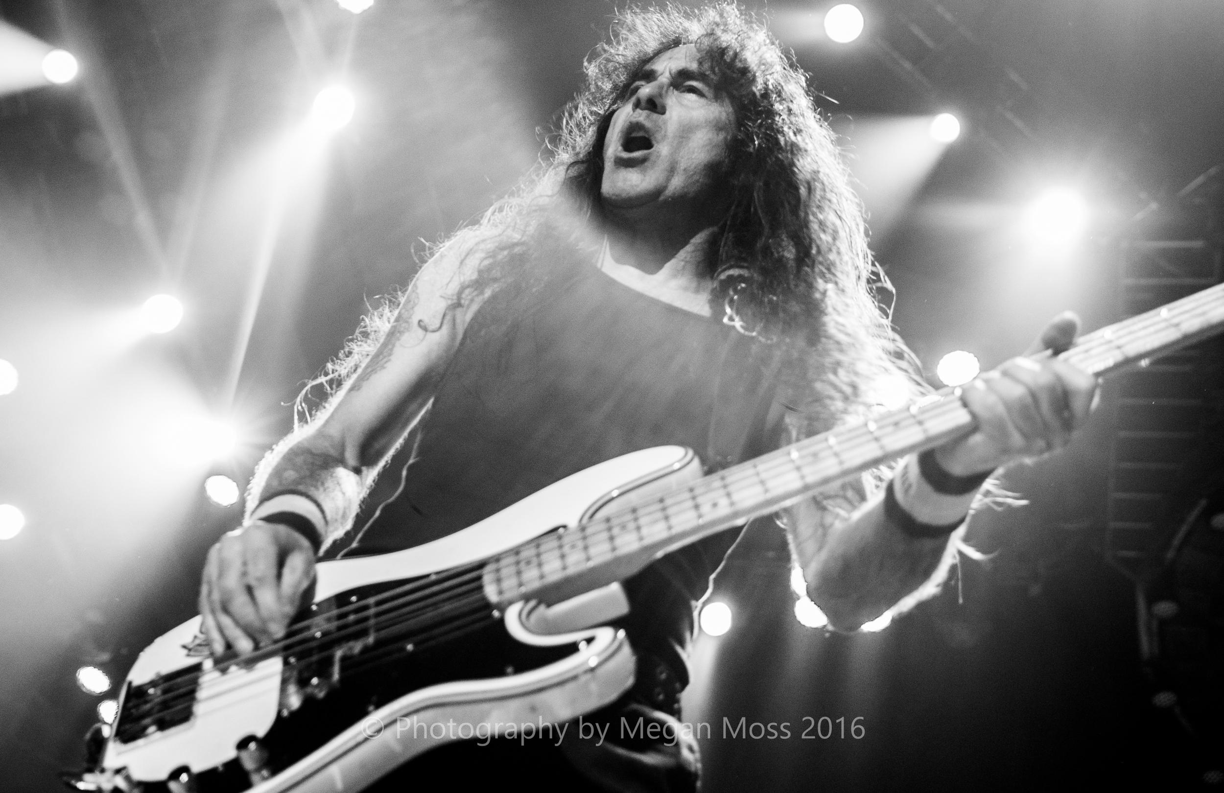 Iron Maiden_Vector_1 May 16-16.jpg