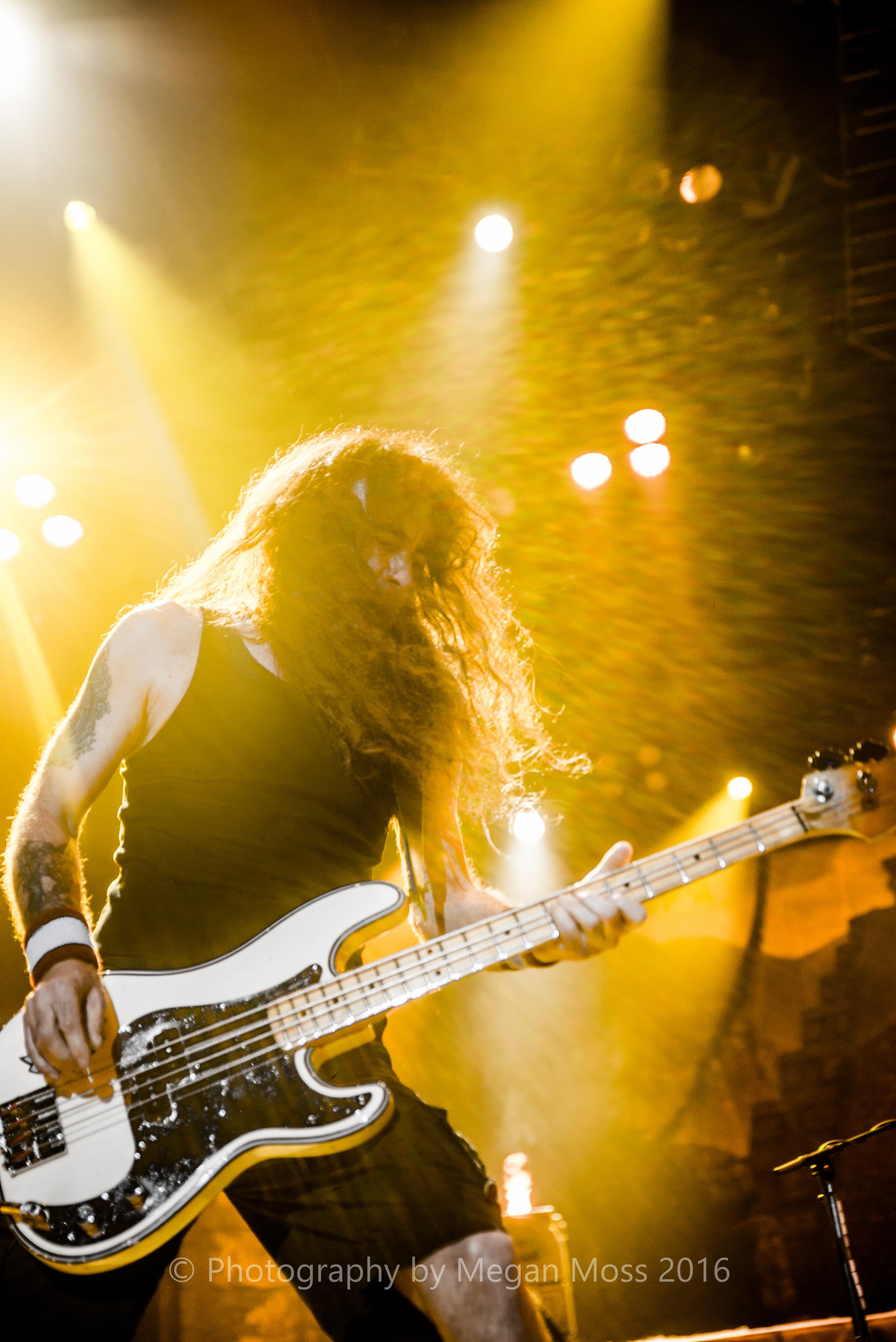 Iron Maiden_Vector_1 May 16-25.jpg