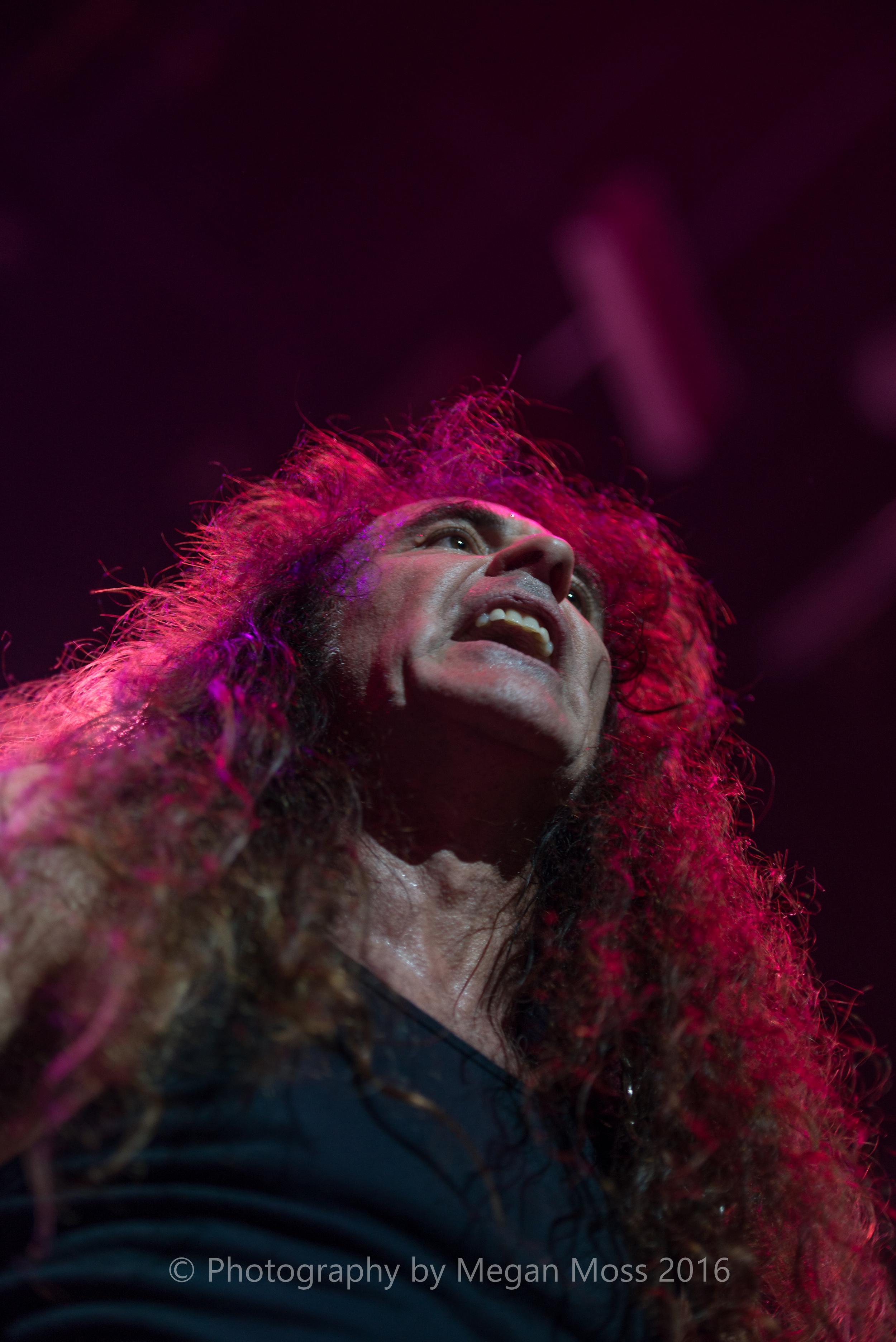 Iron Maiden_Vector_1 May 16-39.jpg
