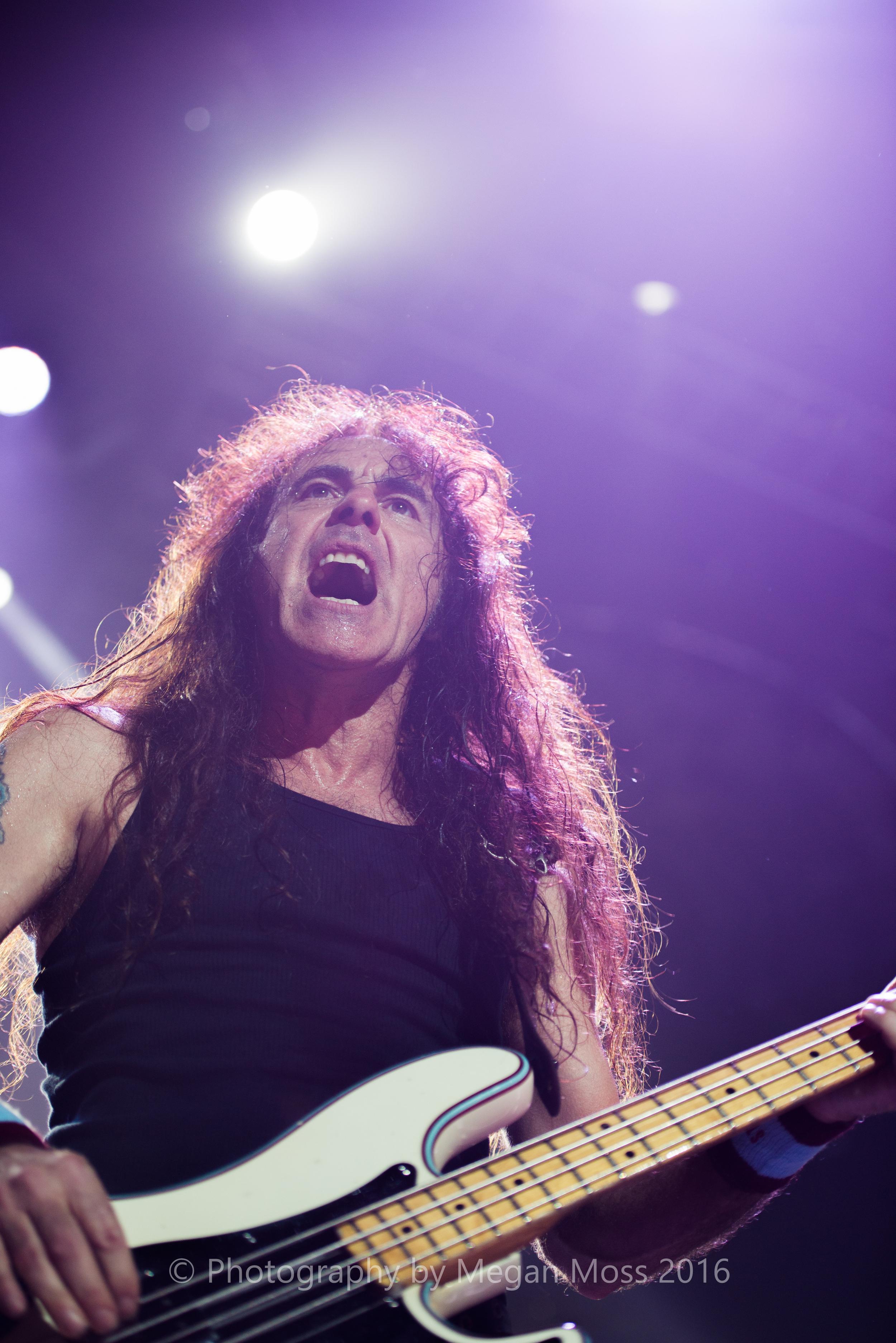 Iron Maiden_Vector_1 May 16-61.jpg