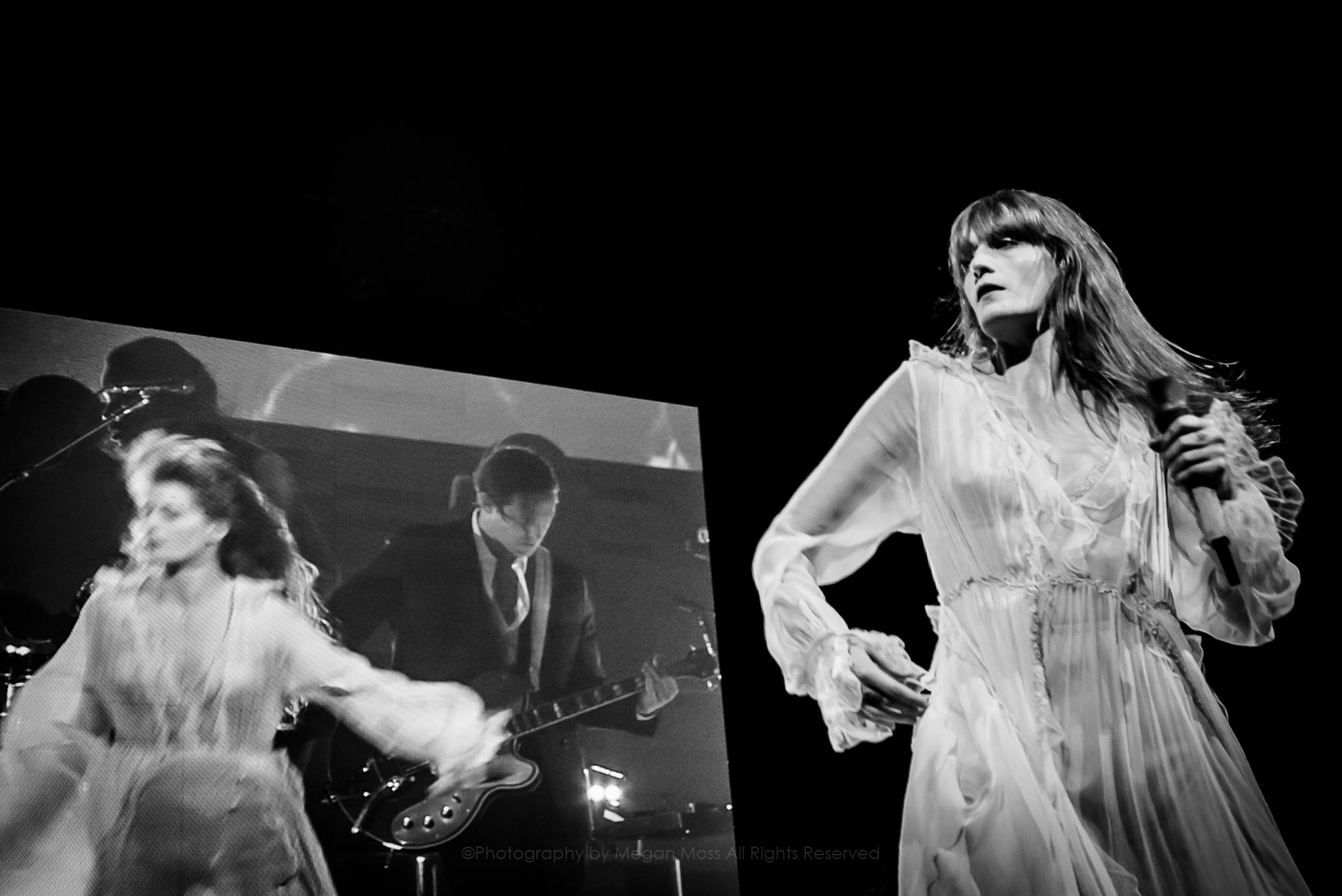 Florence & the Machine_PhotoMeganMoss-9.jpg