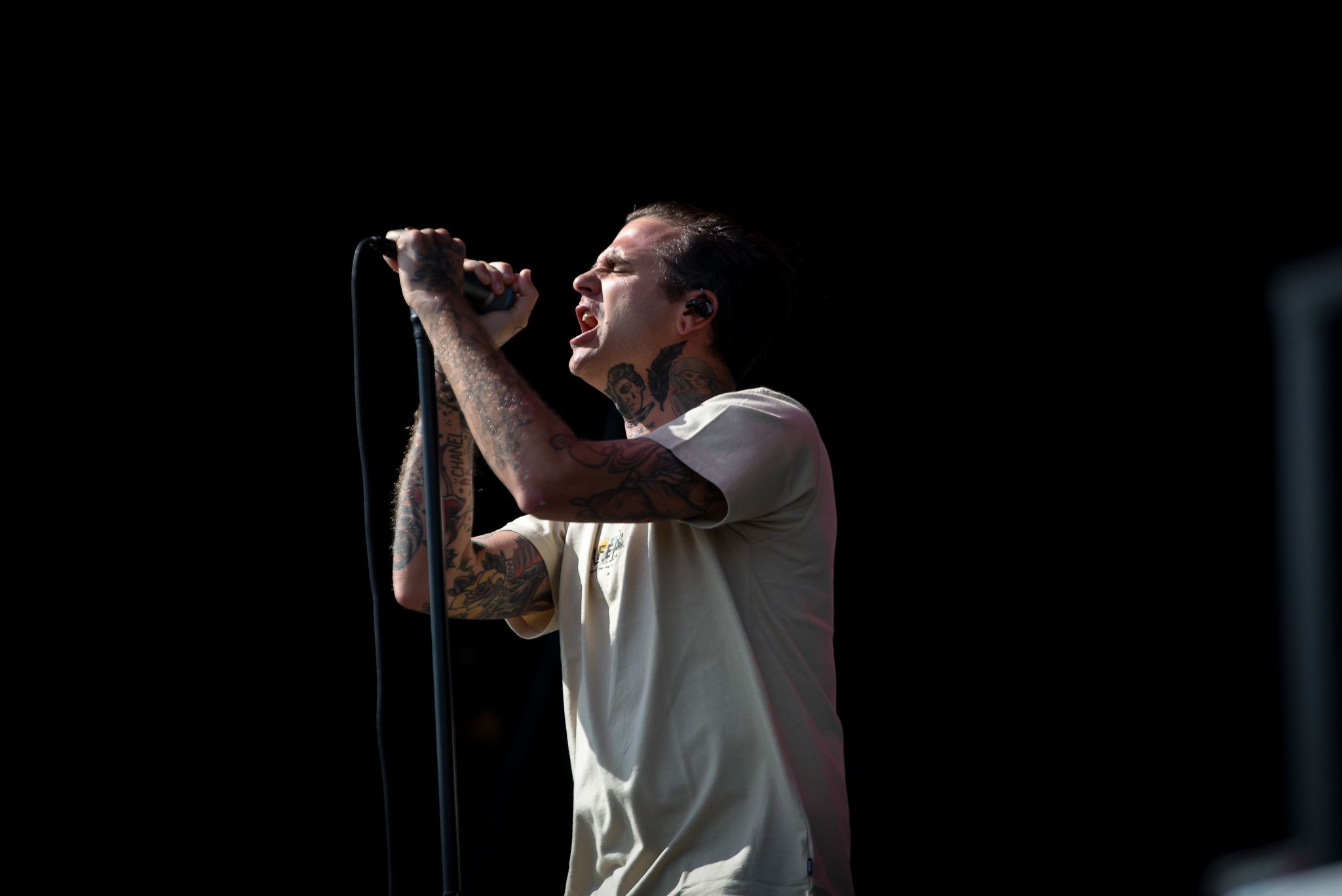 DSC_TheAmityAffliction1.jpg
