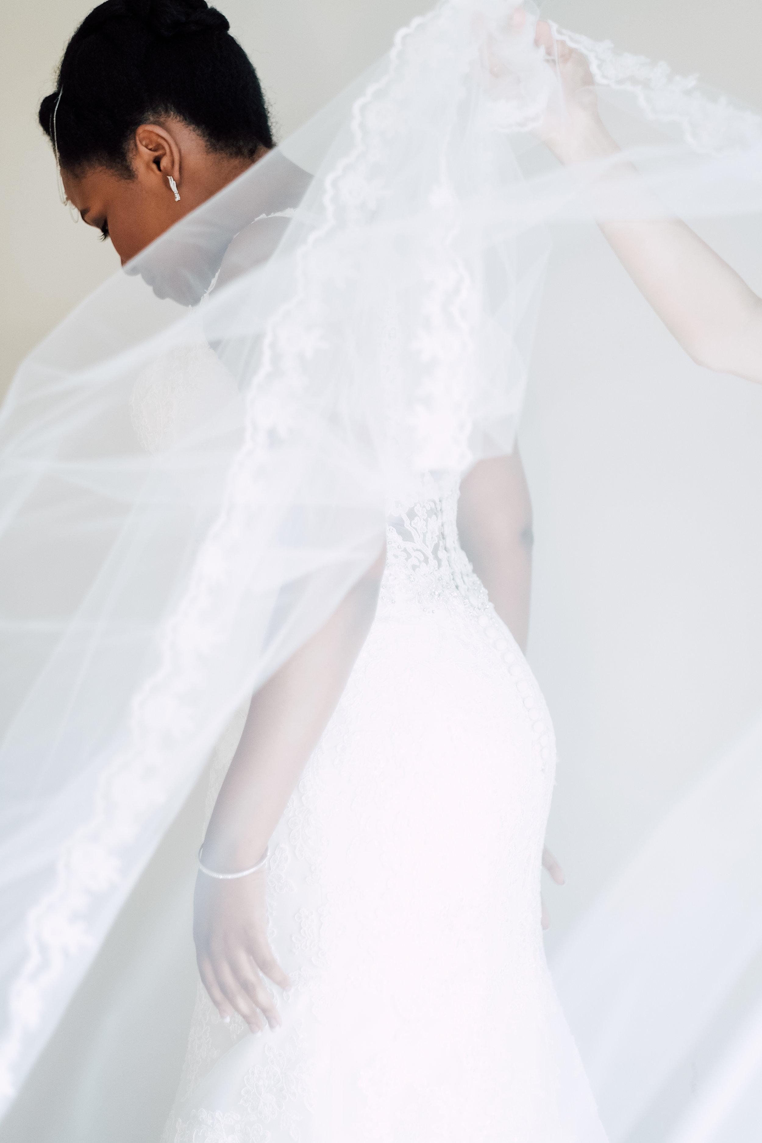Wedding Photography Toronto of bride dress back
