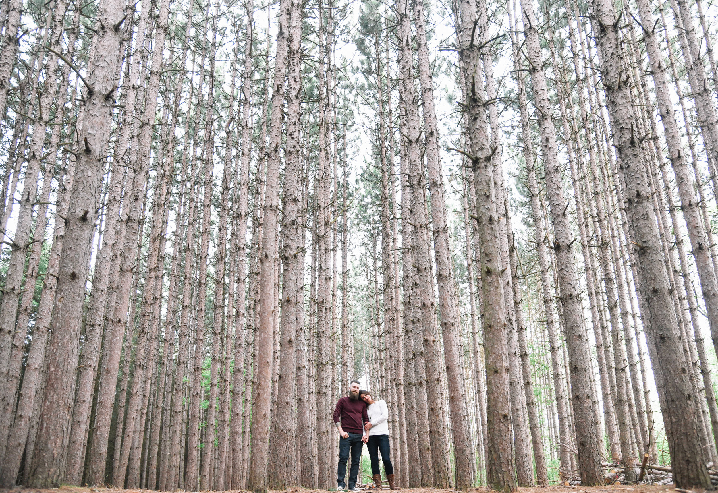 Engagement photography at Kortright conservation Toronto Park