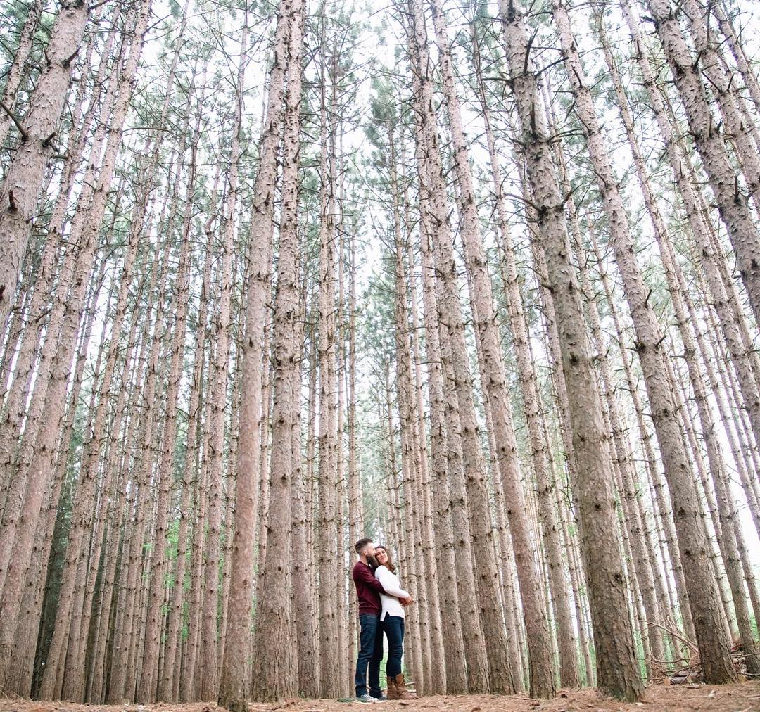 Couple hugging in forest for an engagement photography photoshoot at kortright conservation centre