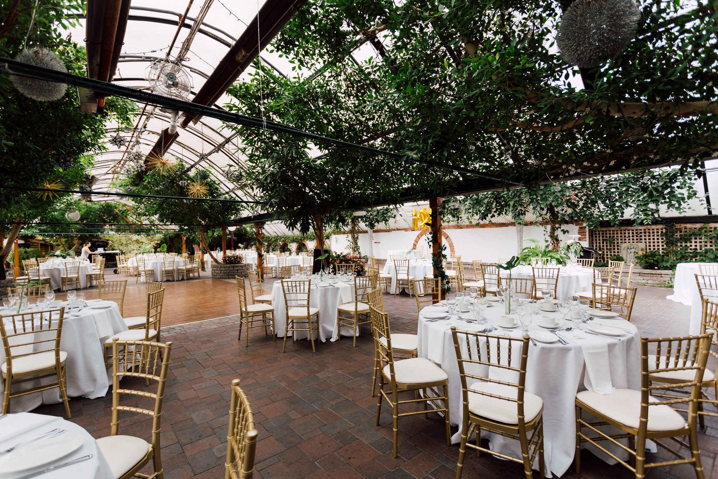 Table set up at a green house for toronto wedding photography