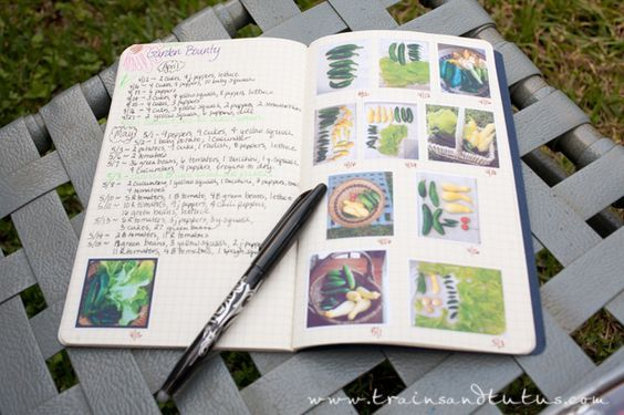 Day23-Garden(7).jpg