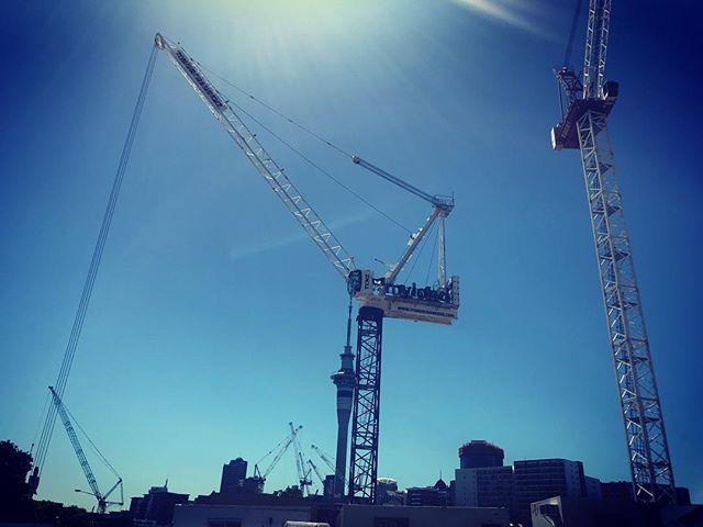 Auckland - city of cranes