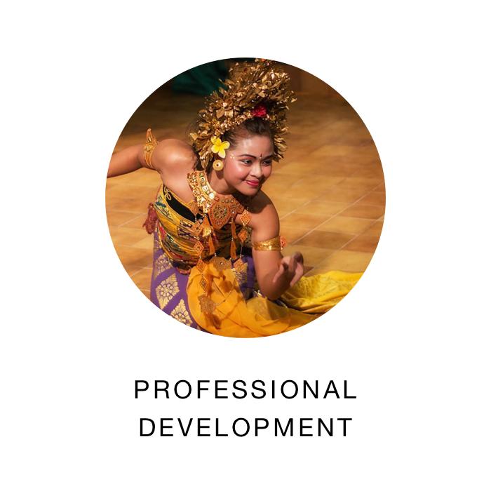 Professional DEv.png