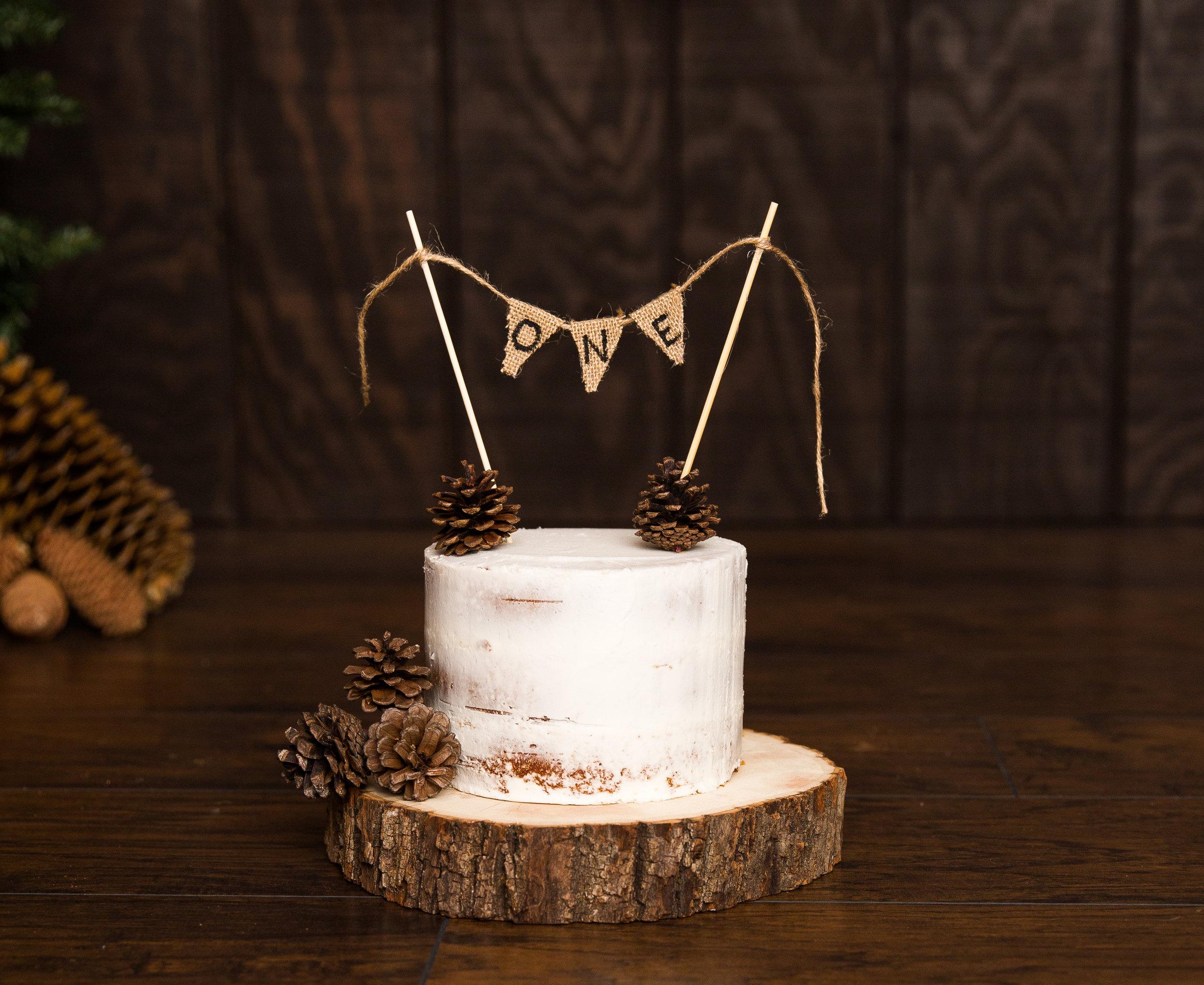 Pine Cone Cake Smash-Pine Cone Cake Smash-0009.jpg