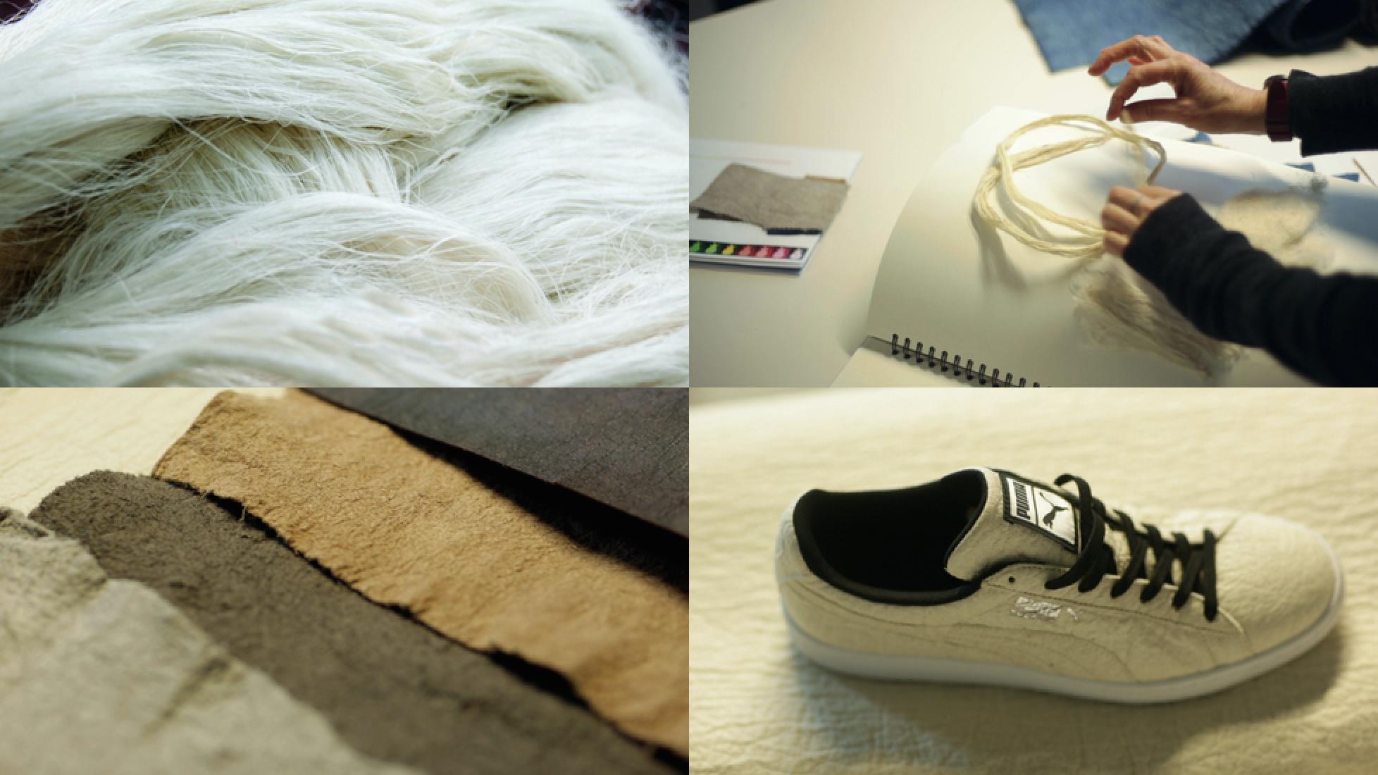 Plant Based Leather Alternative Innovators: Piñatex