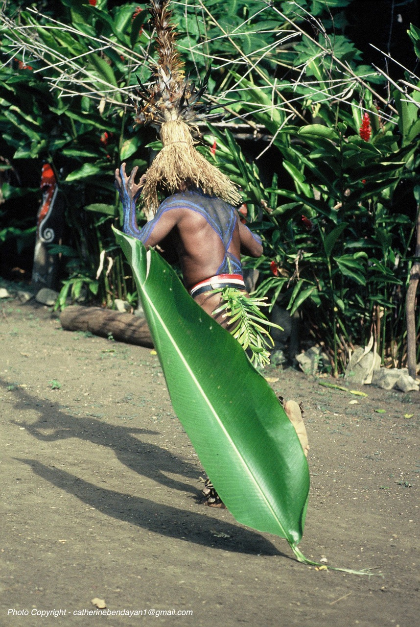 Vanuatu Photo Copyright catherinebendayan1@gmail-DANSE pour LAP_ LAP -F1030059.jpg