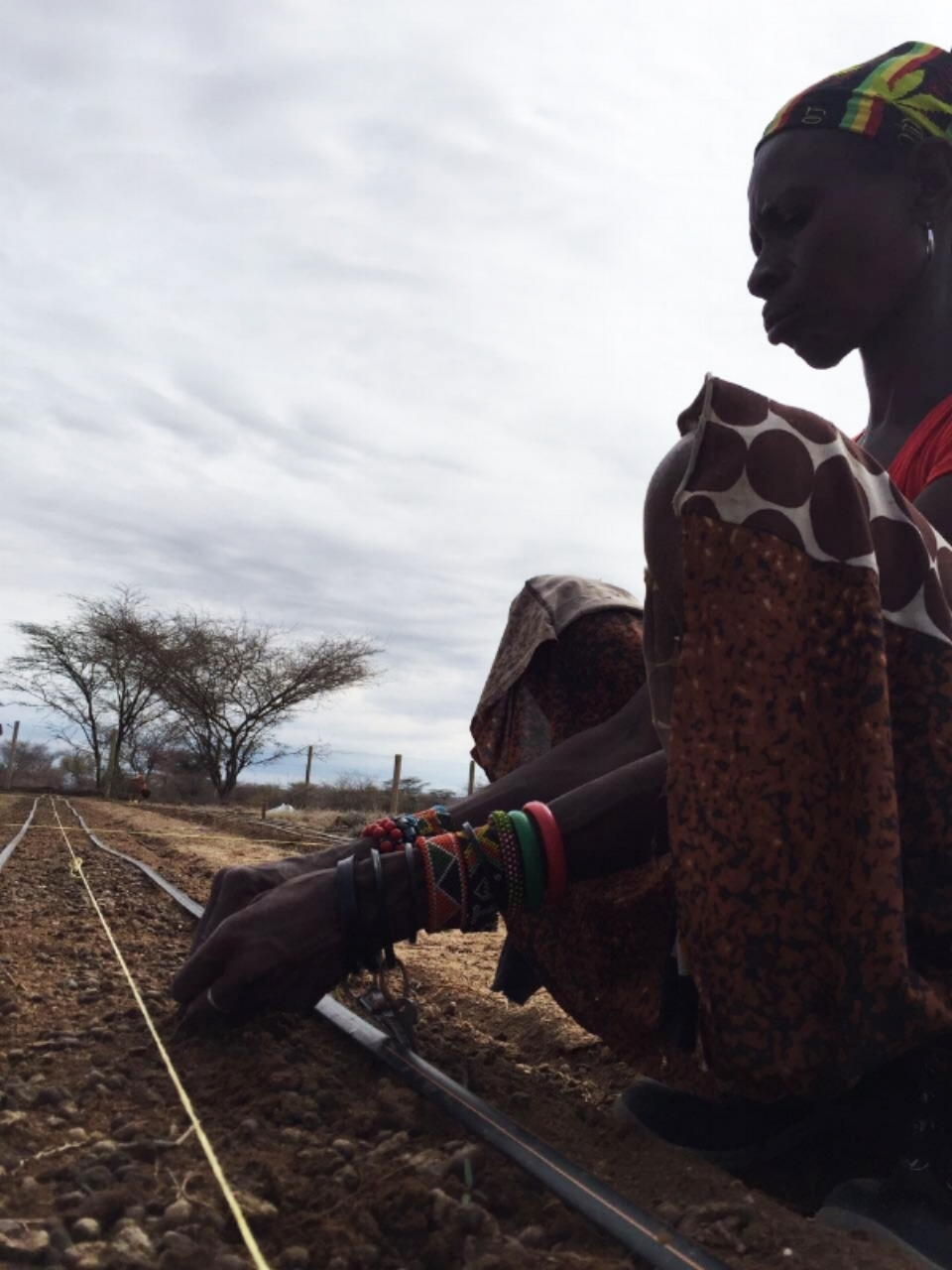 Anna, Turkana woman farmer | Amana Demonstration Farm | Permaculture