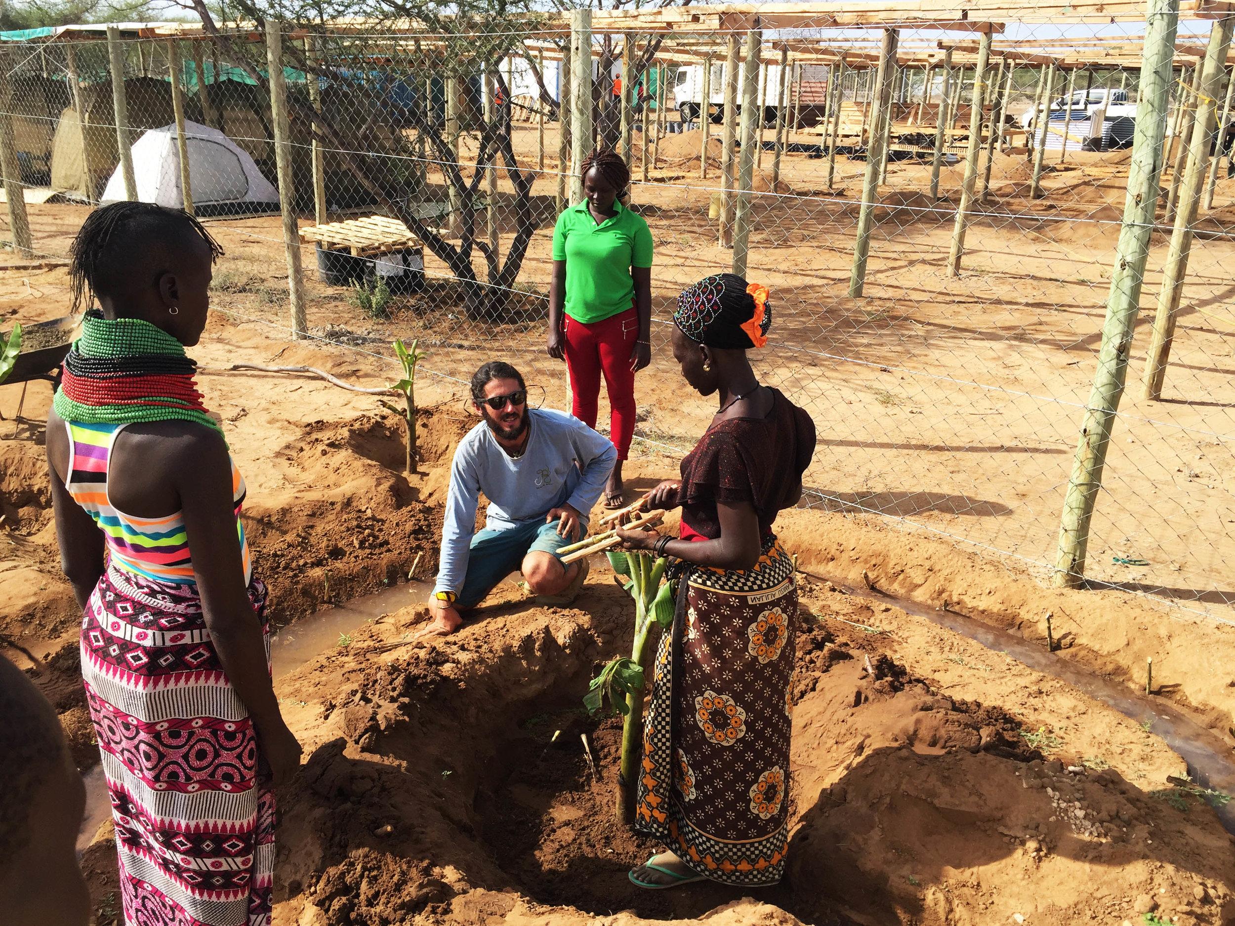 Shower run off water feeds into banana circles on site   Turkana Women Farmers