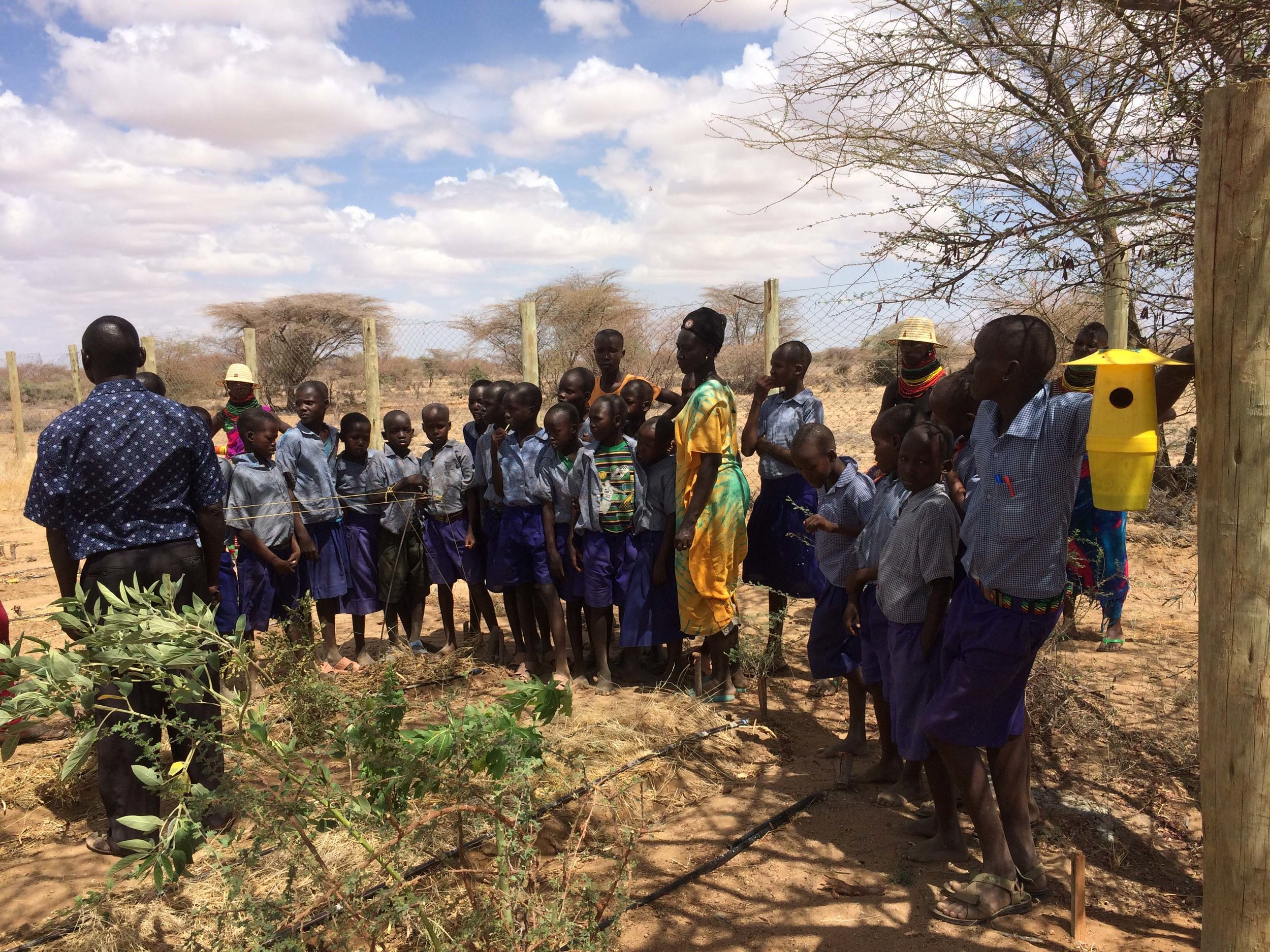 School kids on our drylands permaculture farm