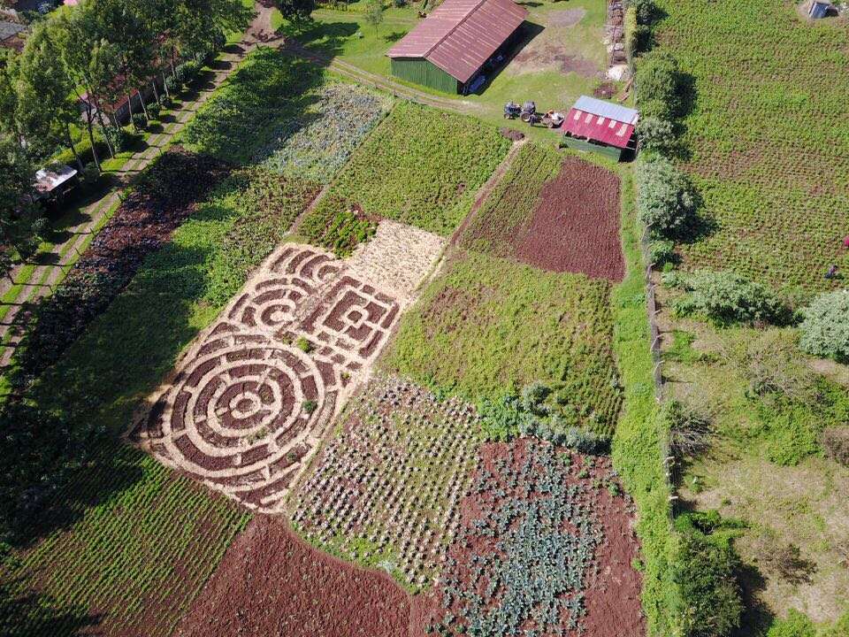The newly designed Mandala Gardens in the middle of the existing farm