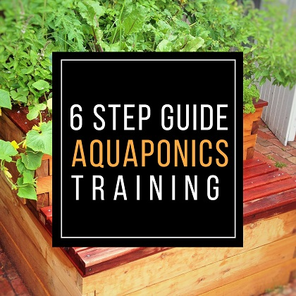 Jonathan Martinetto | Founder of Melbourne Aquaponics