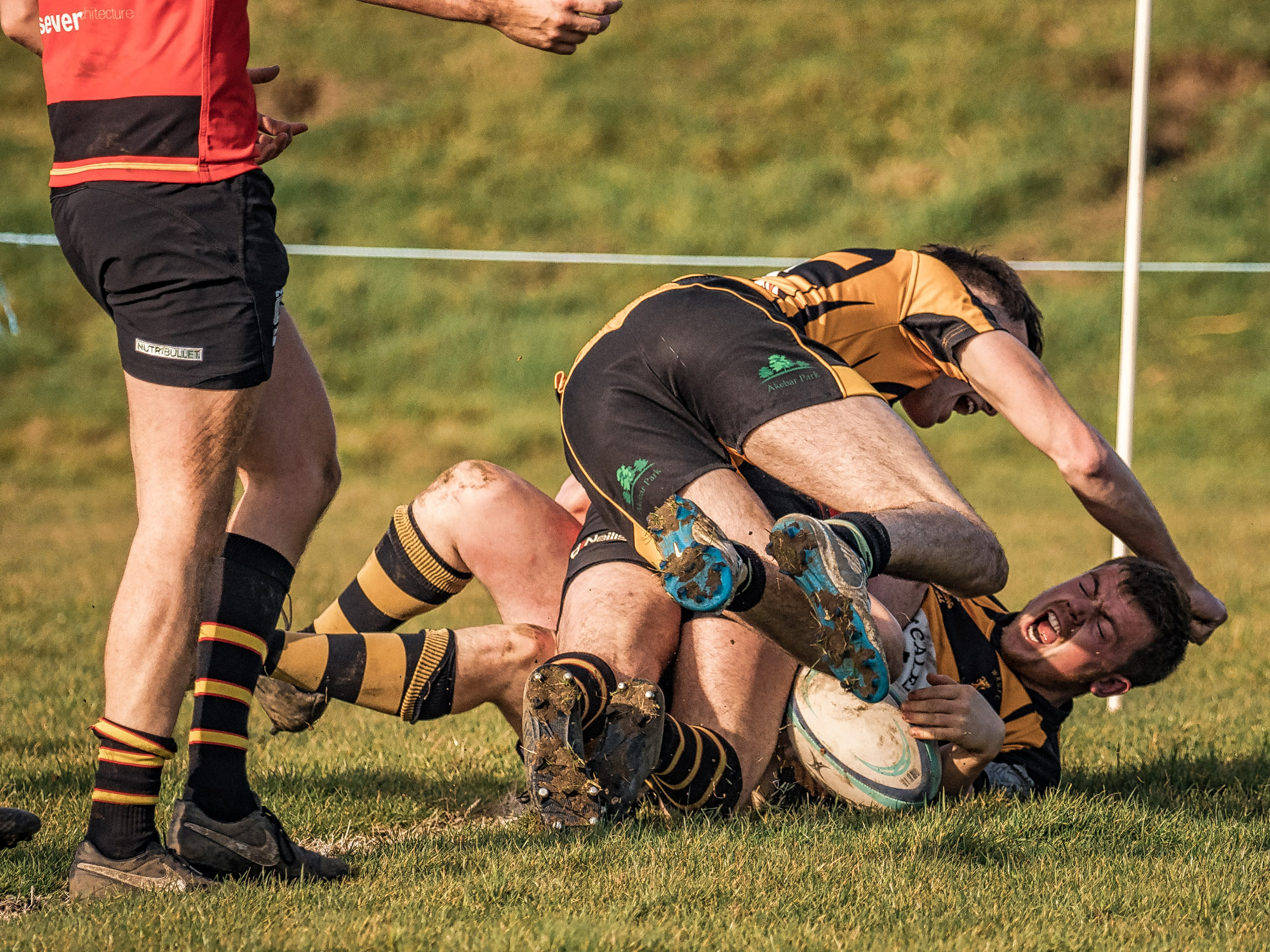 Joy Of A Try, Pain Of Congratulations