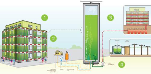 BIQ: The Bio Intelligent Quotient building in Hamburg is powered by algae.