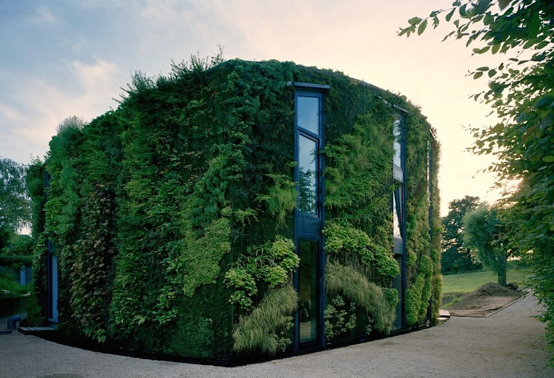 Brussels Green Roof