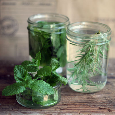 Mint and lavender infused drinks