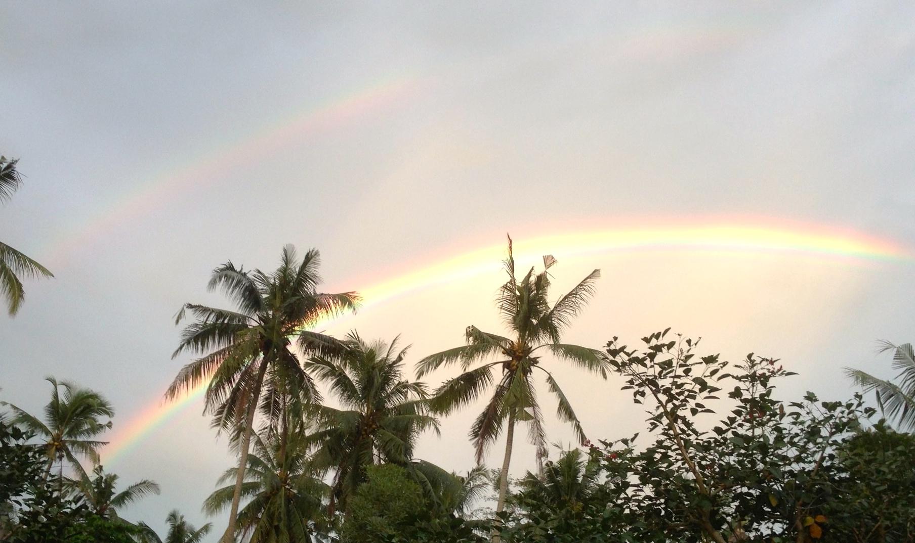 Hawaiian rainbows