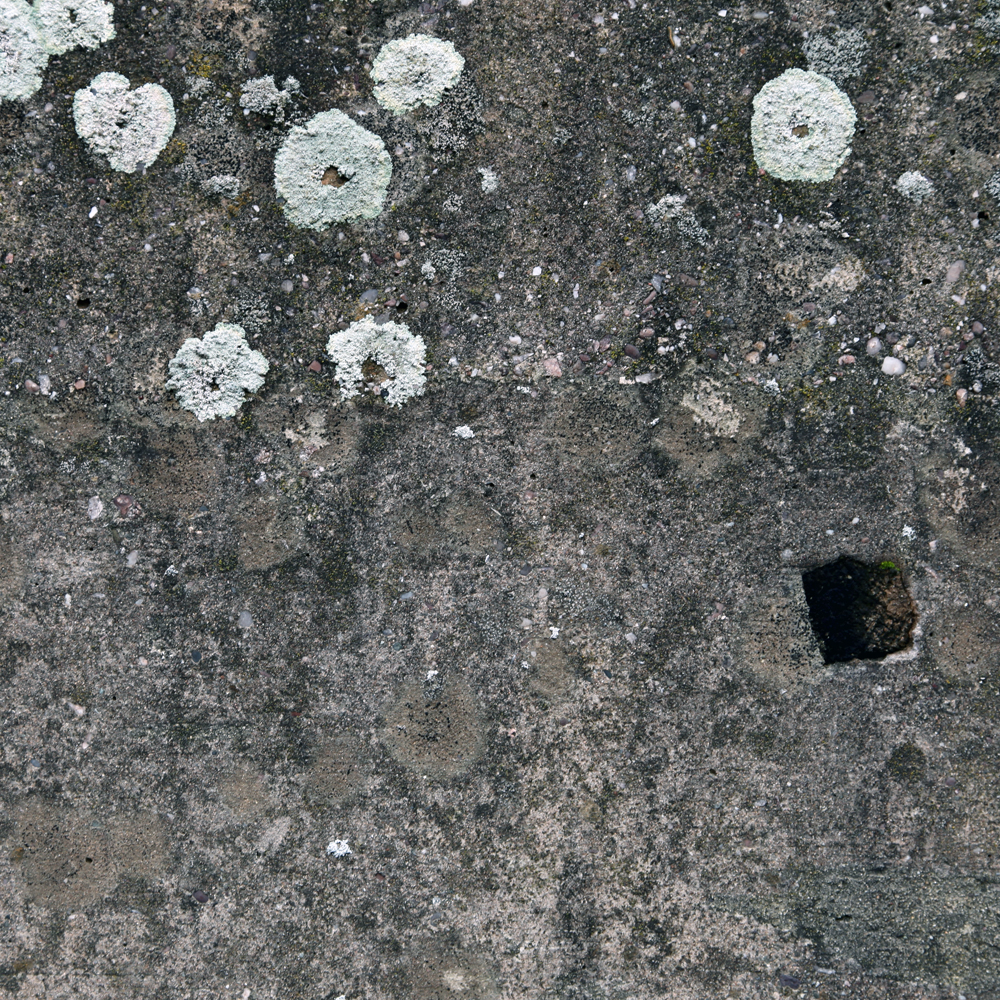 Surface II  , 2014