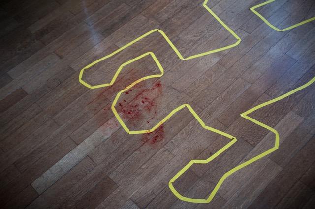 Murder Party - LH-012.jpeg
