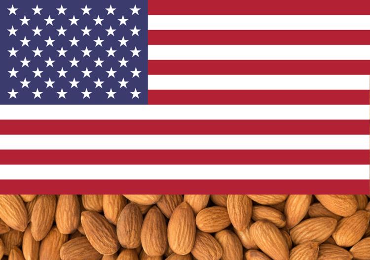 ALMOND KERNELS - USA