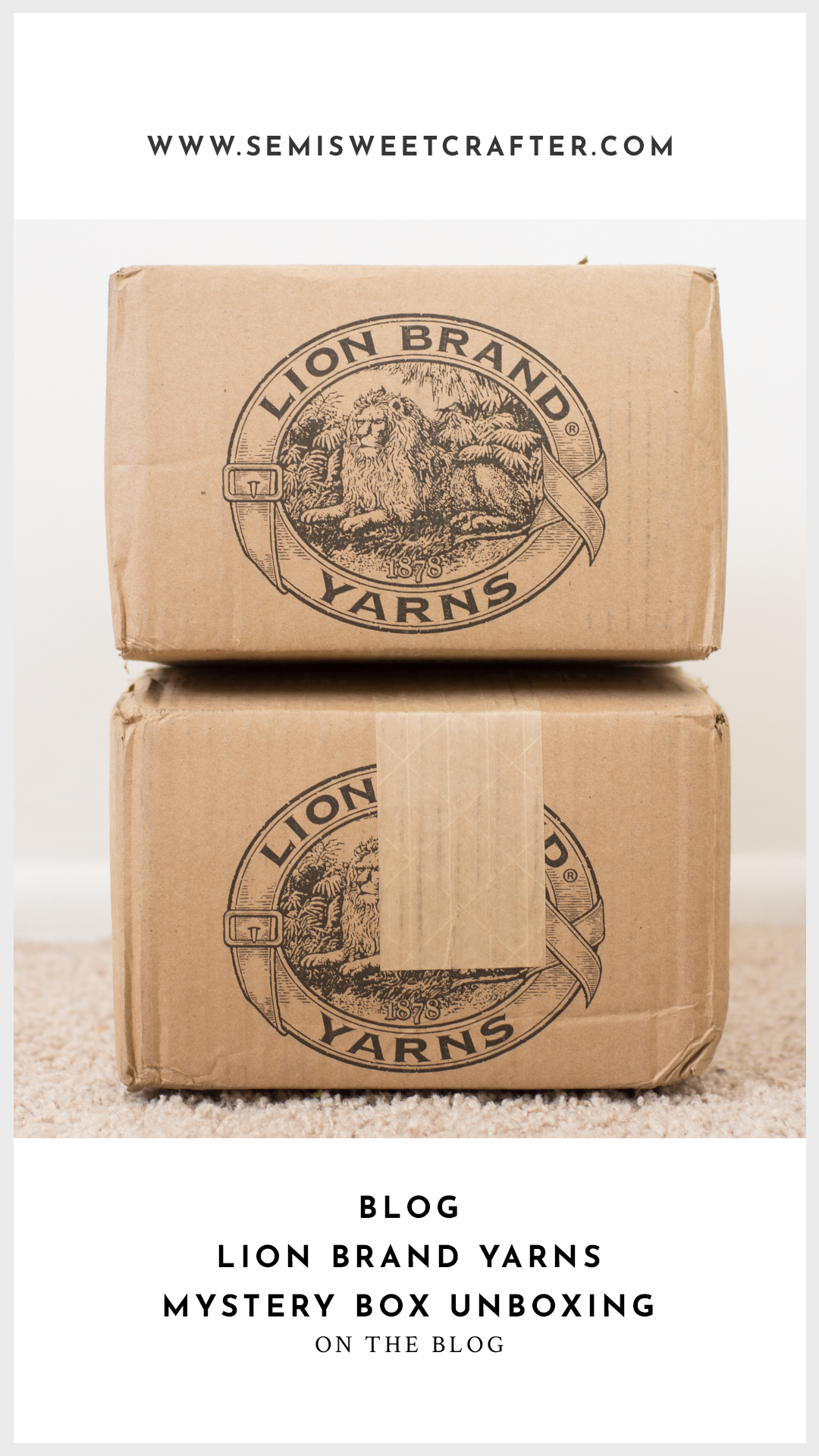 Lion Brand Mystery Box Unboxing