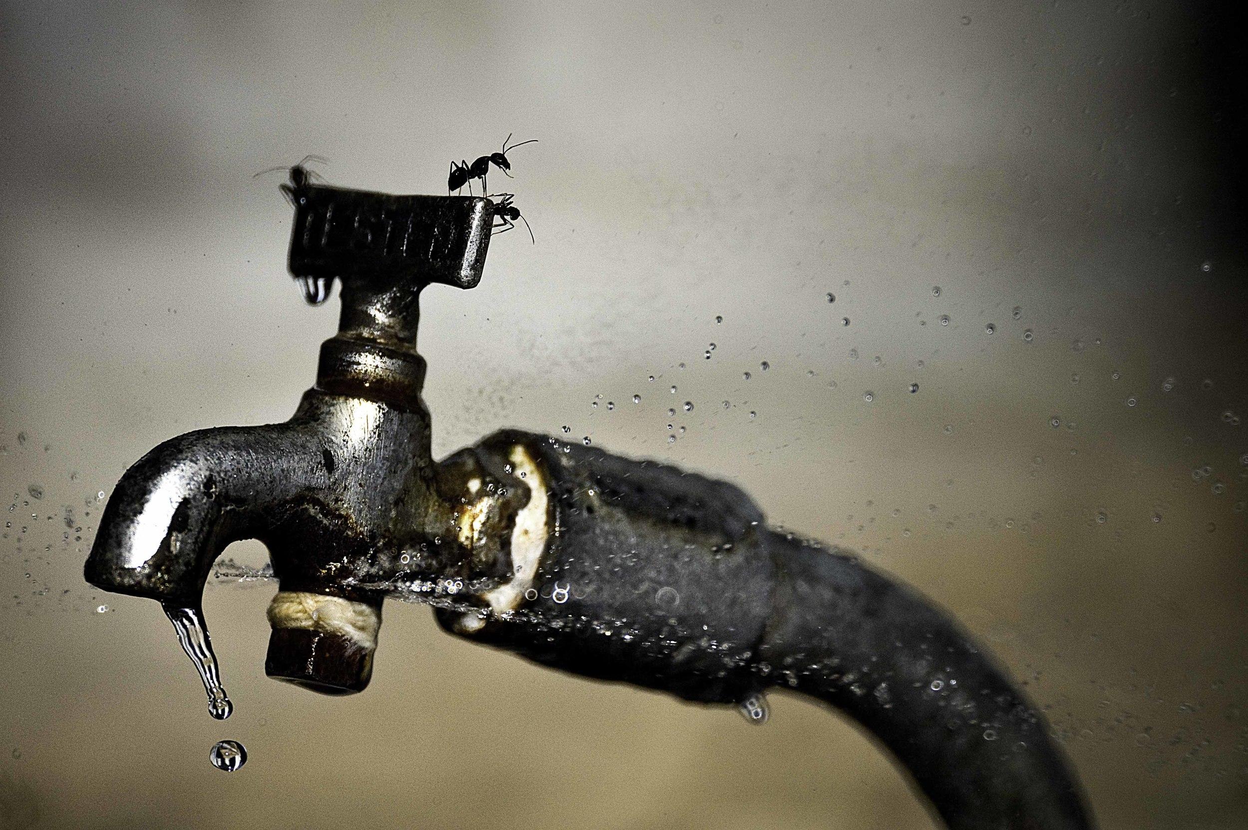 faucet_ARM3478.jpg