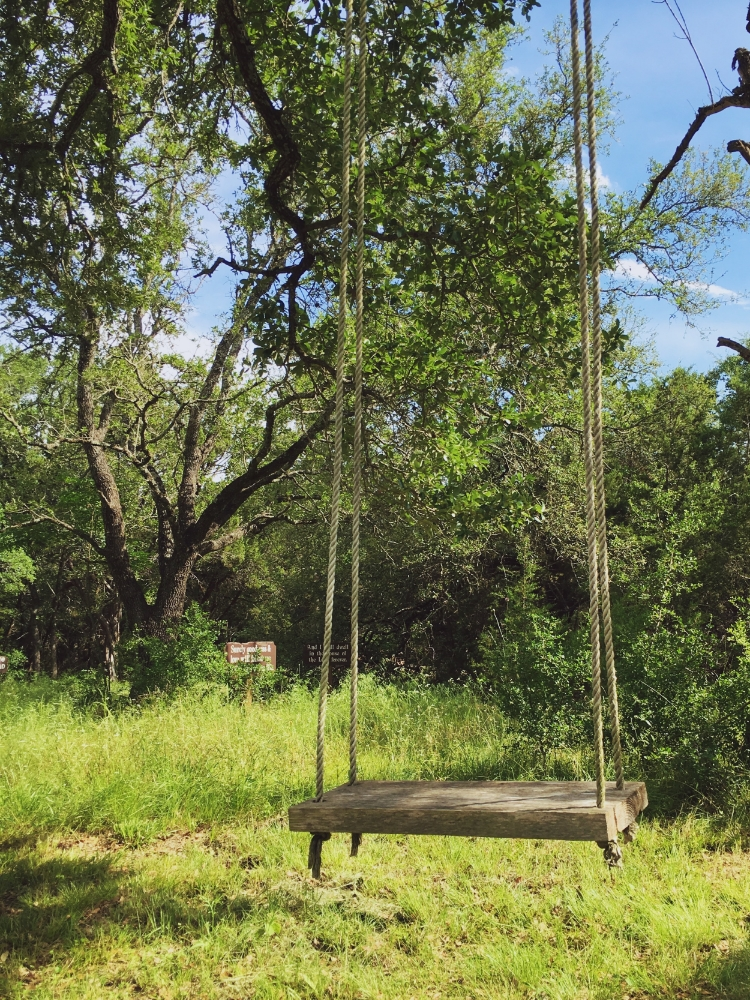 Tree Swing on my hike during a recent silent retreat with Christ church. Temple, TX (2016)