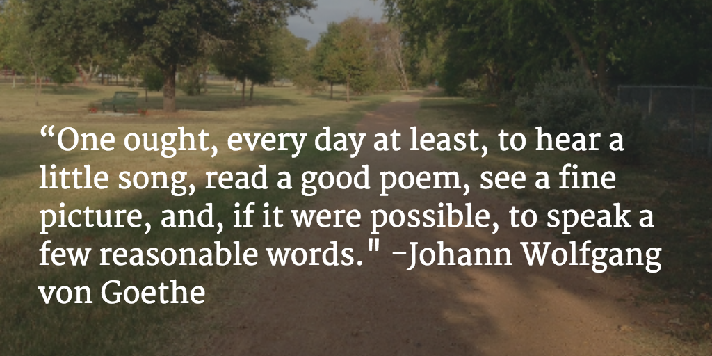 Goethe quote.jpg