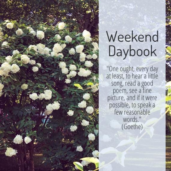 weekend-daybook-goethe-quote.jpg