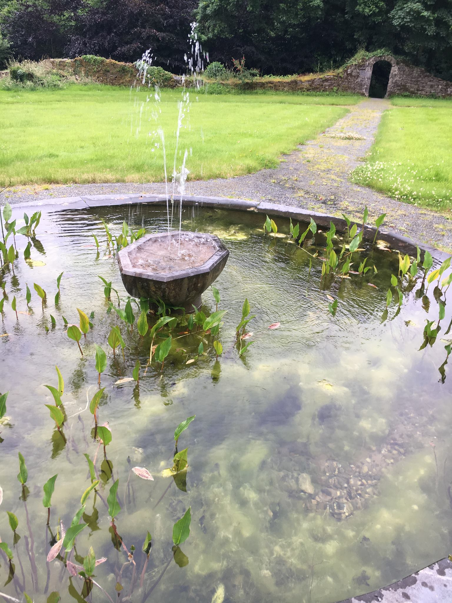 """the fountain in the center of our """"prayer garden"""""""