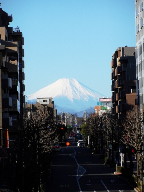 A typical view of Mt. Fuji from our bus. It hasn't lost its wonder!
