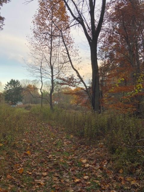 November.Hike19.JPG